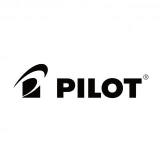 Pilot Iroshizuku Inks