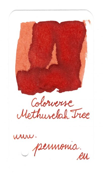 Colorverse No 57 Methuselah Tree swatch